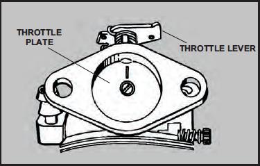 Throttle Plate Service